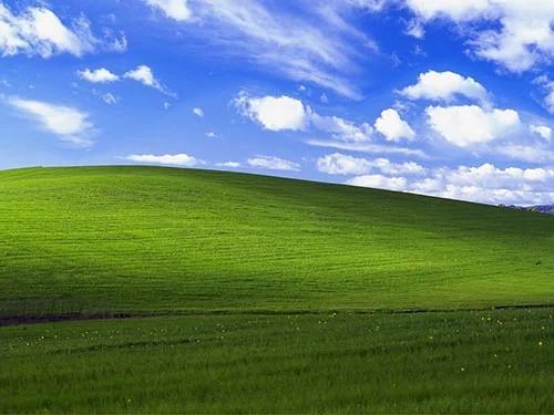 Bạn có biết bức ảnh nền huyền thoại của Windows XP giá bao nhiêu không? - Ảnh 2.