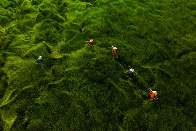 Loạt tác phẩm Việt giành giải cao tại cuộc thi Nhiếp ảnh từ trên không - Ảnh 4.