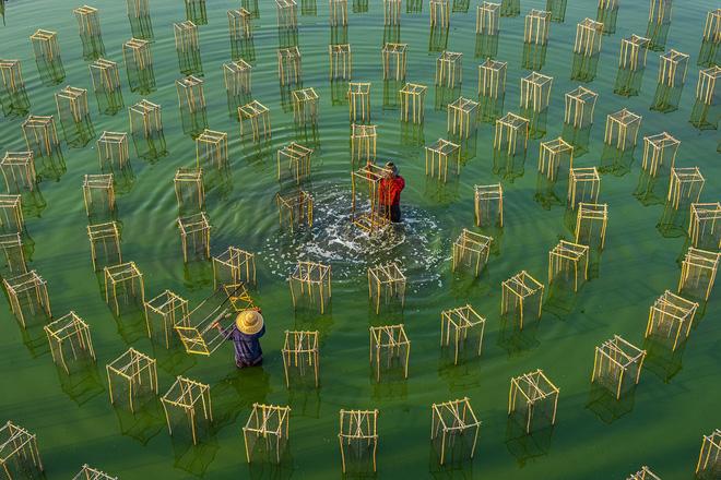 Loạt tác phẩm Việt giành giải cao tại cuộc thi Nhiếp ảnh từ trên không - Ảnh 11.