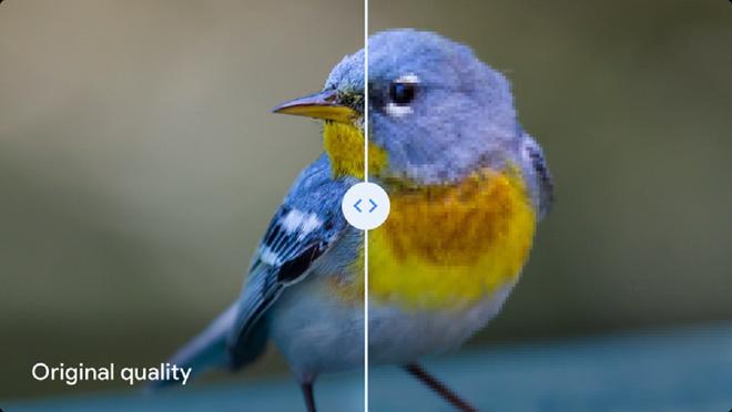 Lật mặt nhanh như Google khi dìm hàng thuật toán nén ảnh nổi tiếng của chính mình - Ảnh 1.