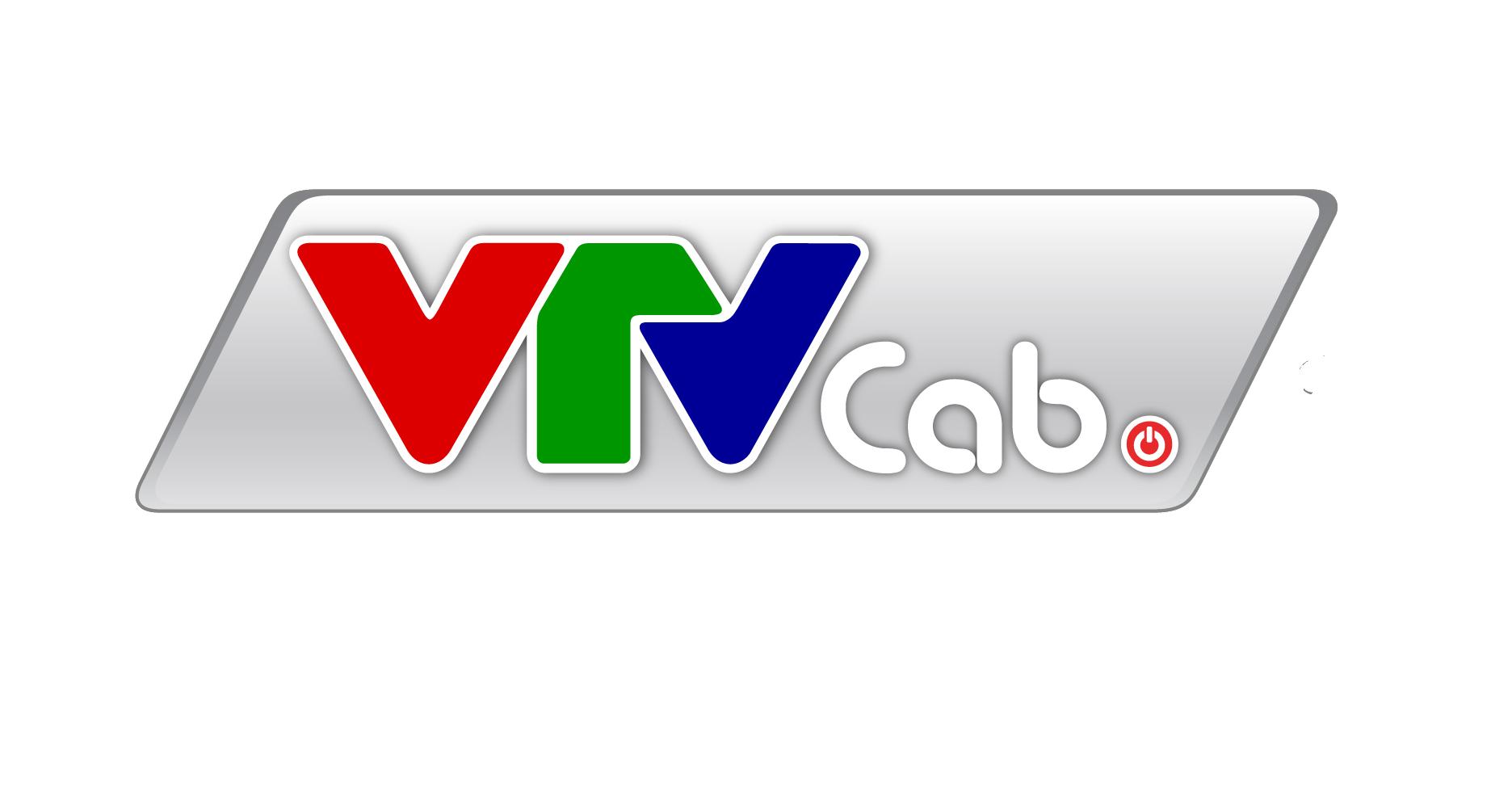 CN CÔNG TY TNHH MTV TỔNG CÔNG TY TRUYỀN HÌNH CÁP VN TẠI BÌNH DƯƠNG