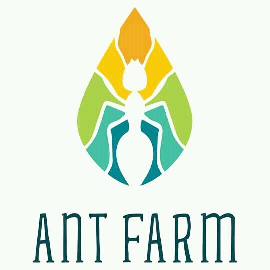 Công Ty TNHH MTV ANT FARM