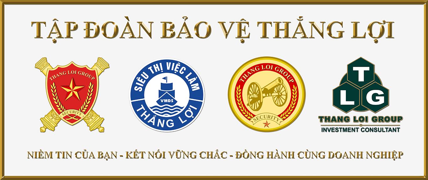 CONG TY CO PHAN TAP DOAN BAO VE THANG LOI