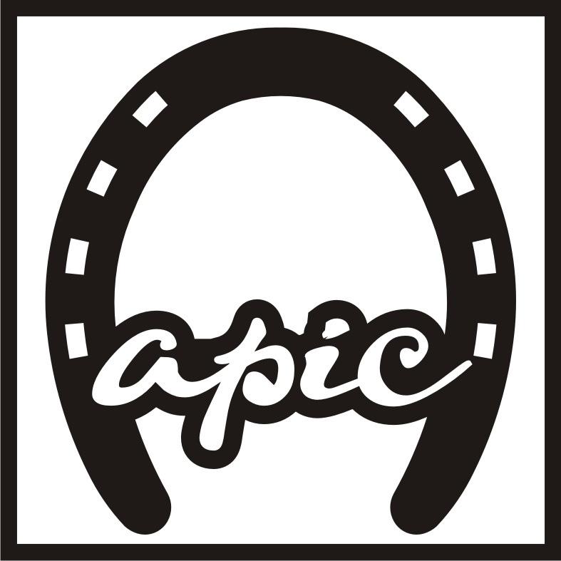 Công ty TNHH Kiến trúc Apic