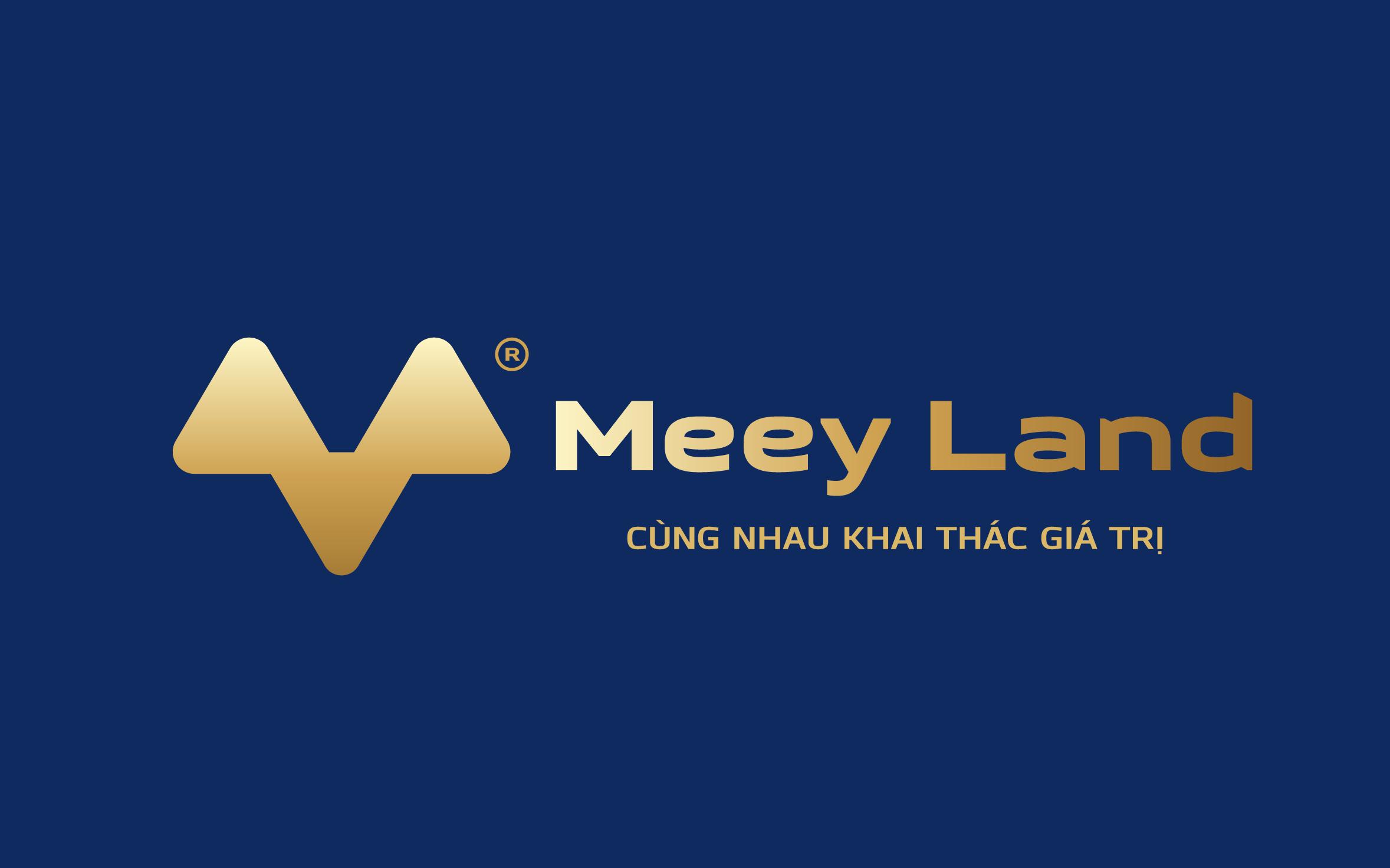 Công ty Cổ phần tập đoàn Meey Land