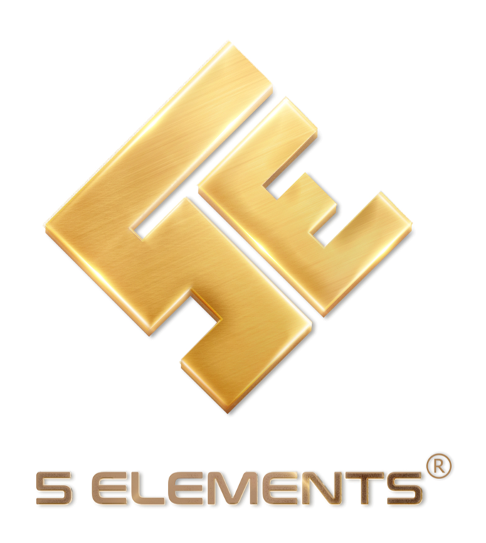 CÔNG TY CỔ PHẦN 5 ELEMENTS HOLDINGS