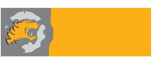 Công ty TNHH Phát triển Đô thị và Khu công nghiệp T&T (T&T LAND)