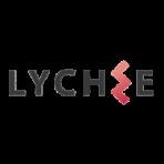 CÔNG TY CỔ PHẦN XUẤT NHẬP KHẨU VÀ THƯƠNG MẠI LYCHEE
