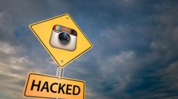 Tối đa 6 triệu người dùng Instagram bị lộ email, điện thoại