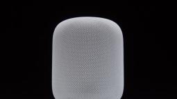 Thiết bị HomePod của Apple lỗi thời đến 3 năm so với Echo của Amazon