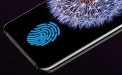 Cảm biến vân tay dưới màn hình của Galaxy S10 sẽ không hoạt động với miếng dán màn hình?