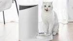 Xiaomi ra mắt máy cho thú cưng ăn, giá 650.000 đồng