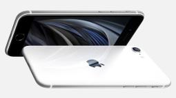 Chúng ta đã có iPhone SE, vì sao lại không có smartphone Android SE?